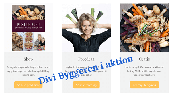 Divi WordPress tema i action